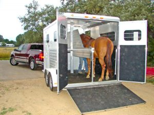 horse trailer cleaning