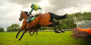 horse jockey Tony Romero